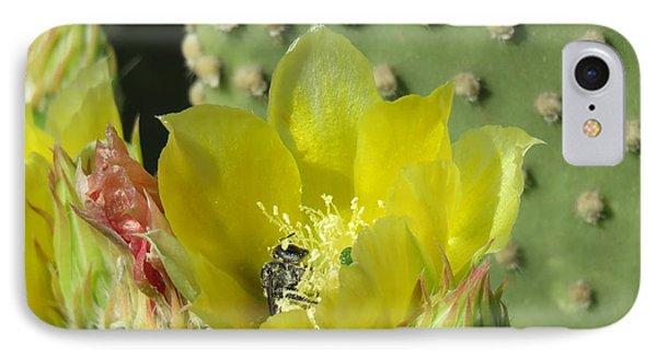 Bee-deep In Cactus Pollen IPhone Case by Feva Fotos