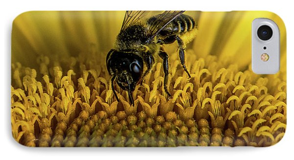 IPhone Case featuring the photograph Bee In A Sunflower by Paul Freidlund