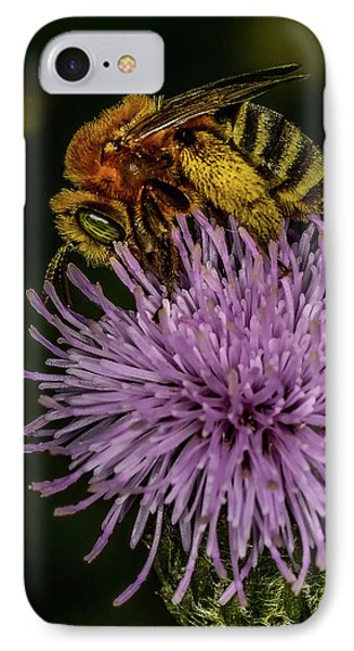 IPhone Case featuring the photograph Bee On A Thistle by Paul Freidlund