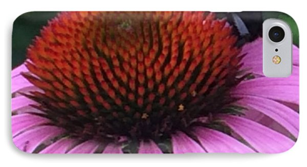 Bee On Flower By Saribelle Rodriguez IPhone Case
