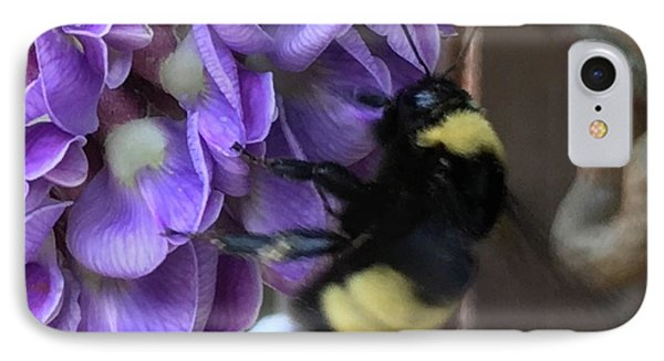 IPhone Case featuring the painting Bee On Native Wisteria I by Angela Annas