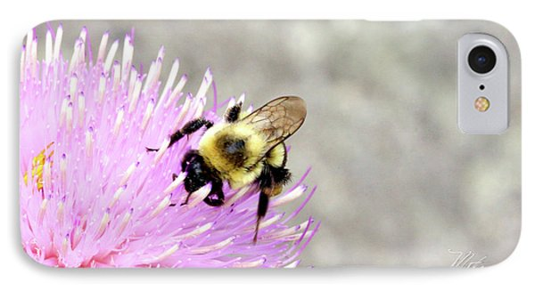 IPhone Case featuring the photograph Bee On Pink Bull Thistle by Meta Gatschenberger