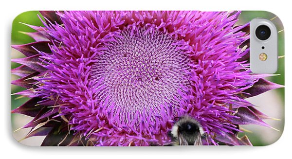 IPhone Case featuring the photograph Bee On Thistle by David Chandler