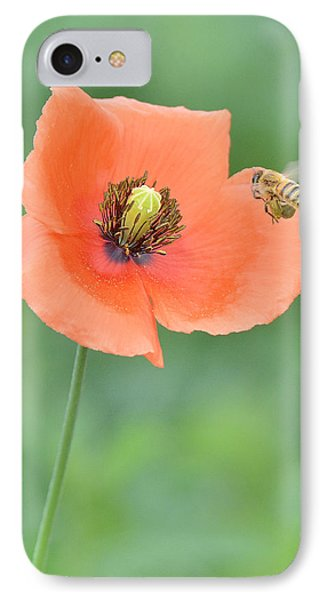Bee To Poppy IPhone Case by Alan Lenk