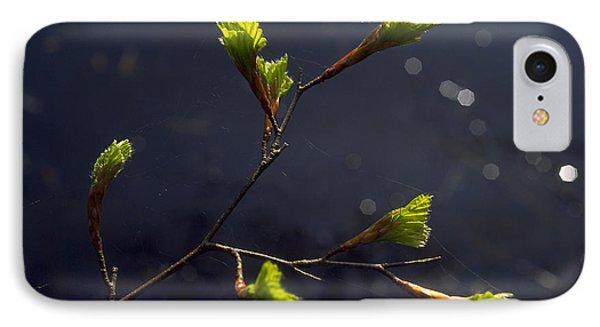 Beech Buds IPhone Case by Michael Mogensen