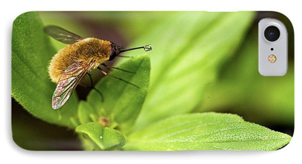 Beefly Phone Case by Christopher Holmes