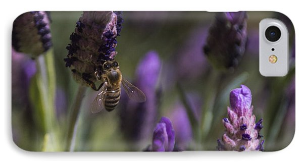 Bee's Delight IPhone Case