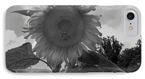 IPhone Case featuring the digital art Bees On A Sunflower by Chris Flees