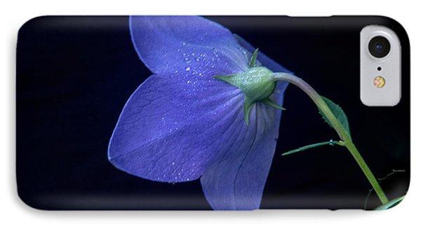Bell Flower From Behind IPhone Case by Douglas Barnett