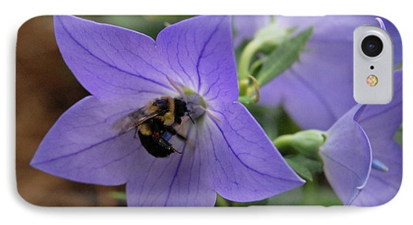IPhone Case featuring the photograph Bellflower And Bee  by Marie Hicks