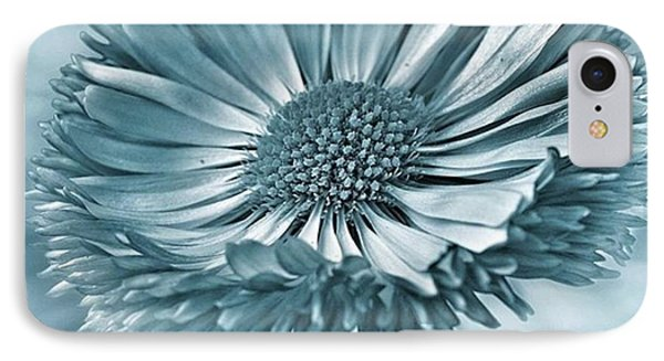 Bellis In Cyan  #flower #flowers IPhone Case by John Edwards