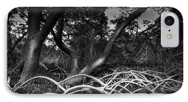 Below The Canopy IPhone Case by Marvin Spates