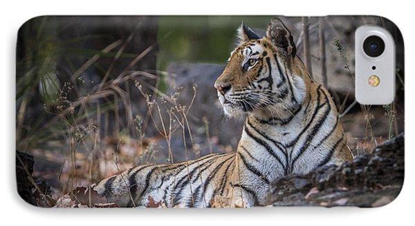 Bengal Tiger IPhone Case by Hitendra SINKAR