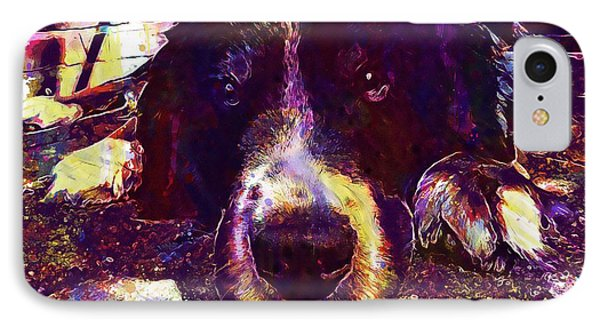 Berner Sennen Dog Lazy Summer Relax  IPhone Case
