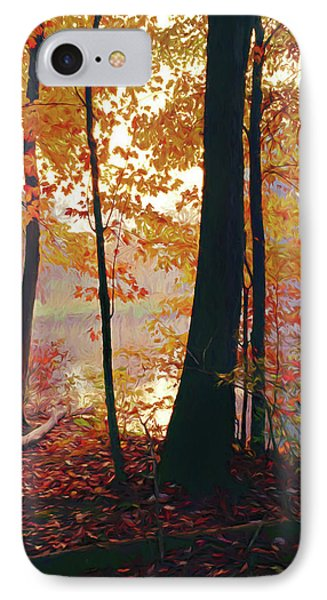 Bernharts Dam Fall 031 IPhone Case by Scott McAllister