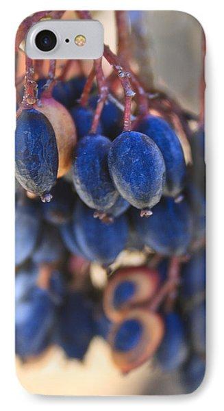 Berries Blue Too IPhone Case