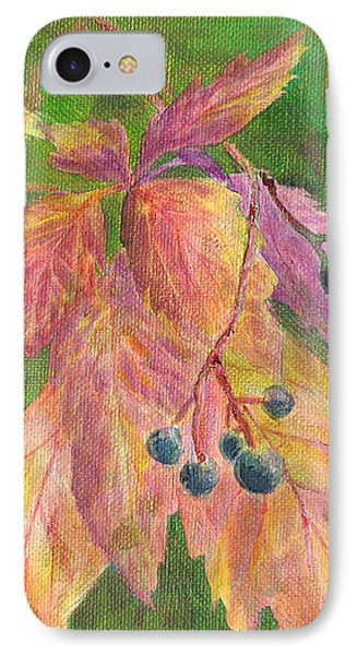 Berry Challenge IPhone Case by Denise Hoag