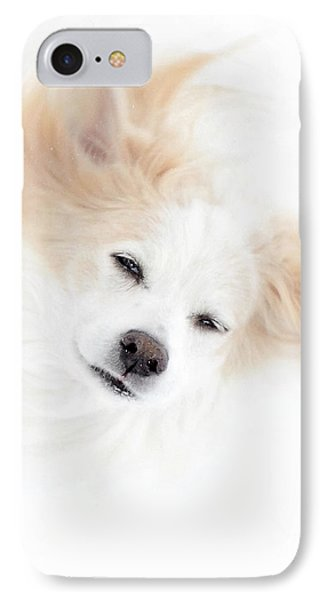 Best Friend IPhone Case by Sue Stefanowicz