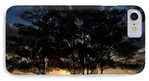 IPhone Case featuring the photograph Between The Trees by Melanie Moraga