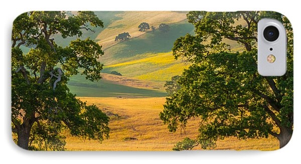 Between Two Trees IPhone Case by Marc Crumpler