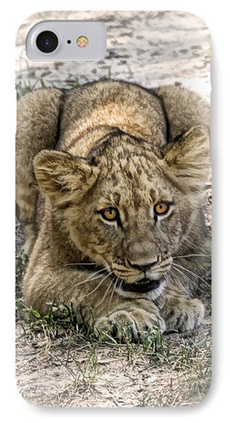 Beware IPhone Case by Cheri McEachin