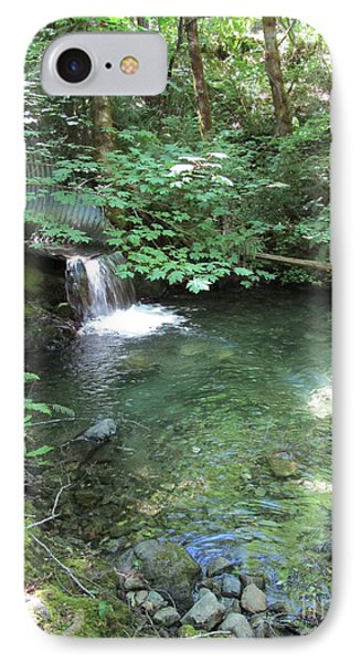 IPhone Case featuring the photograph Beyond The End Of The Trail At Limpy Creek by Marie Neder
