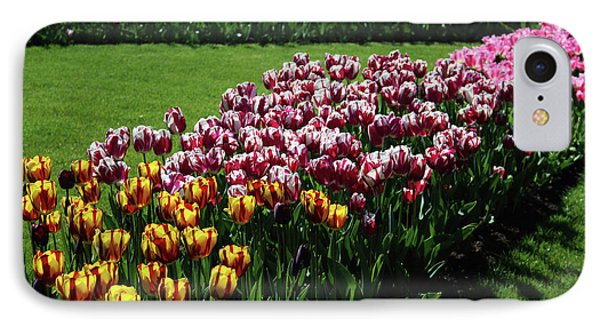 Multicolor Tulips IPhone Case by Ana Mireles