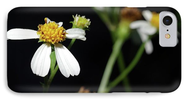IPhone Case featuring the photograph Bidens Alba by Richard Rizzo