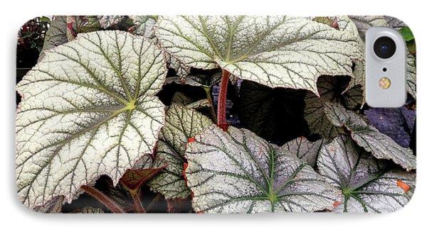 Big Begonia Leaves IPhone 7 Case by Nareeta Martin
