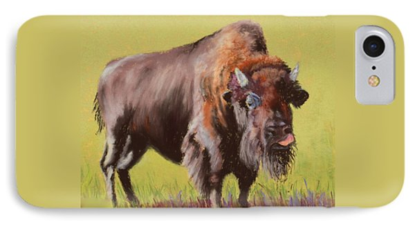 IPhone Case featuring the painting Big Boy by Nancy Jolley