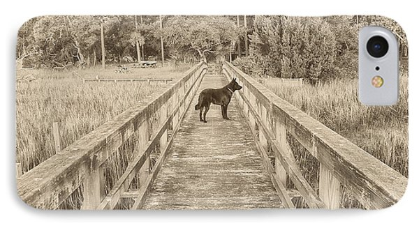 IPhone Case featuring the photograph Big Dog by Margaret Palmer