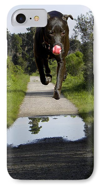 Big Dog On Heron Hideout Trail IPhone Case by Chris Mercer