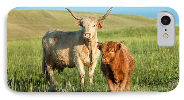 Cow iPhone 7 Case - Big Horn, Little Horn by Todd Klassy