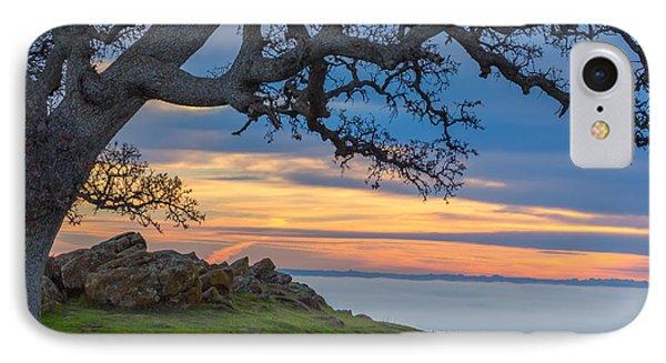 Big Oak Above Fog IPhone Case by Marc Crumpler