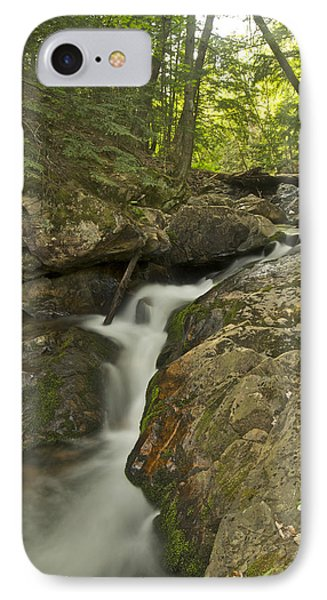 Big Pup Falls 4 Phone Case by Michael Peychich