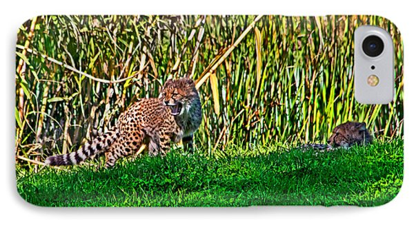 Big Yawn By Little Cub IPhone Case by Miroslava Jurcik