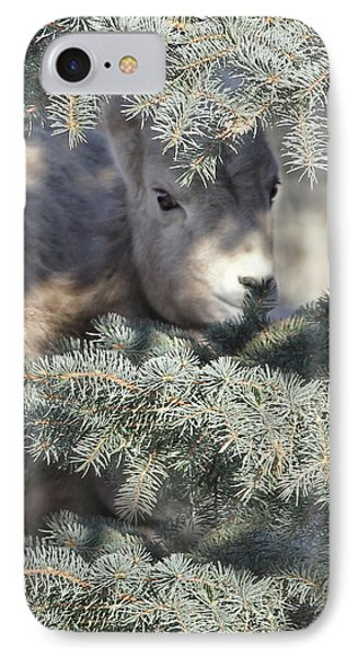 IPhone Case featuring the photograph Bighorn Sheep Lamb's Hiding Place by Jennie Marie Schell