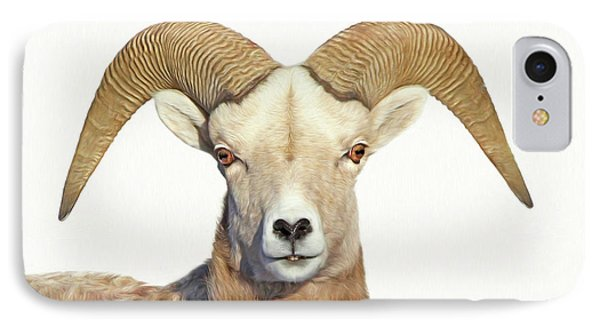 IPhone Case featuring the photograph Bighorn Sheep Ram by Jennie Marie Schell