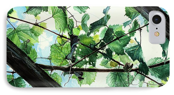 Biltmore Grapevines Overhead IPhone Case