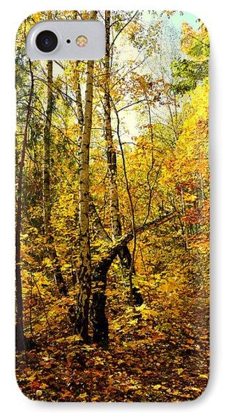 Birch Autumn IPhone Case by Henryk Gorecki