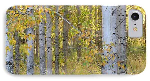 Birch Forest Phone Case by Bonnie Bruno