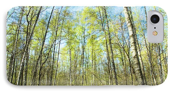 Birch Forest Spring IPhone Case