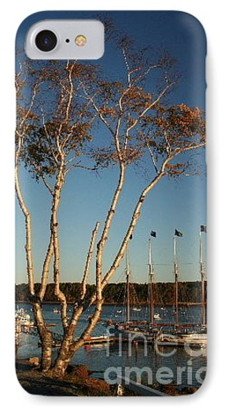 Birch Tree By The Harbor Phone Case by Linda Jackson