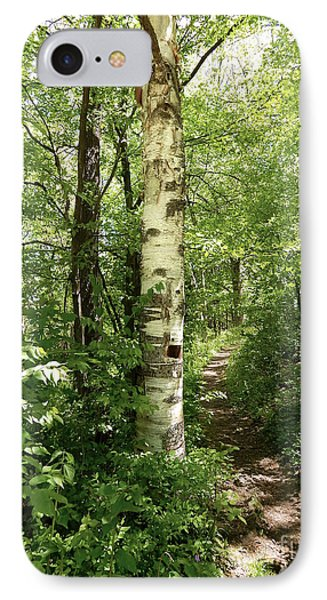 Birch Tree Hiking Trail IPhone Case by Phil Perkins