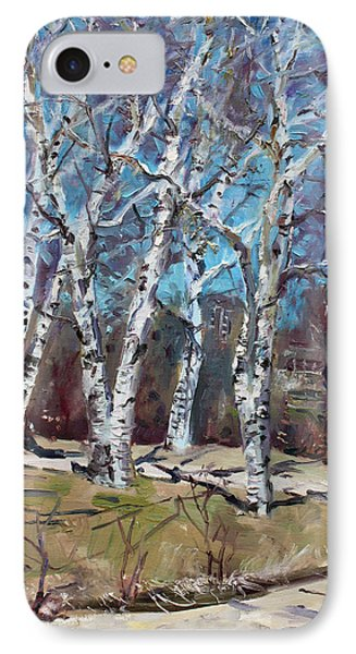 Birch Trees Next Door IPhone Case by Ylli Haruni