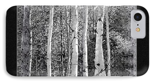 IPhone Case featuring the photograph Birch Trees by Susan Kinney