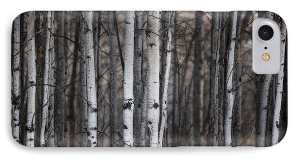 Birches IPhone Case by Diane Dugas