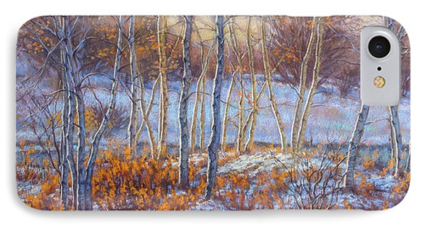 Birches In First Snow IPhone Case by Fiona Craig