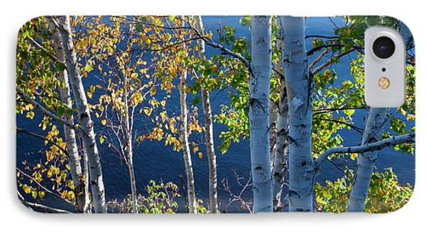 IPhone Case featuring the photograph Birches On Lake Shore by Elena Elisseeva