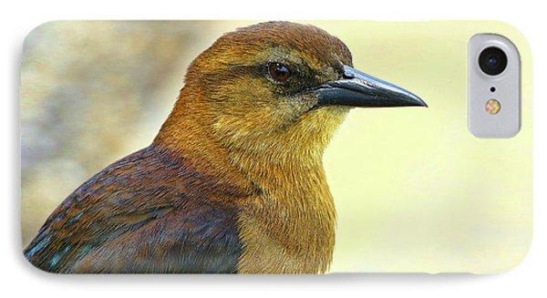 IPhone Case featuring the photograph Bird Beauty by Deborah Benoit
